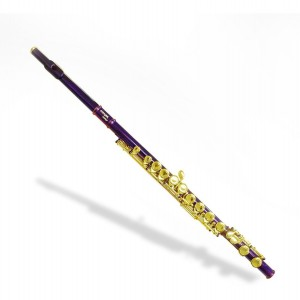 Flauta traversa doble color...