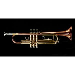 Trompeta etinger doble color